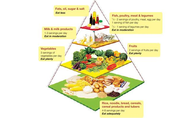Your Nutrition Guide: The Malaysia Food Pyramid